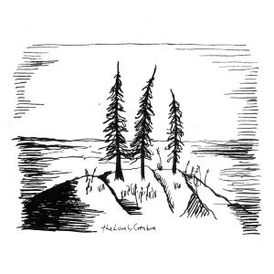 lille ø med grantræer tegning illustration