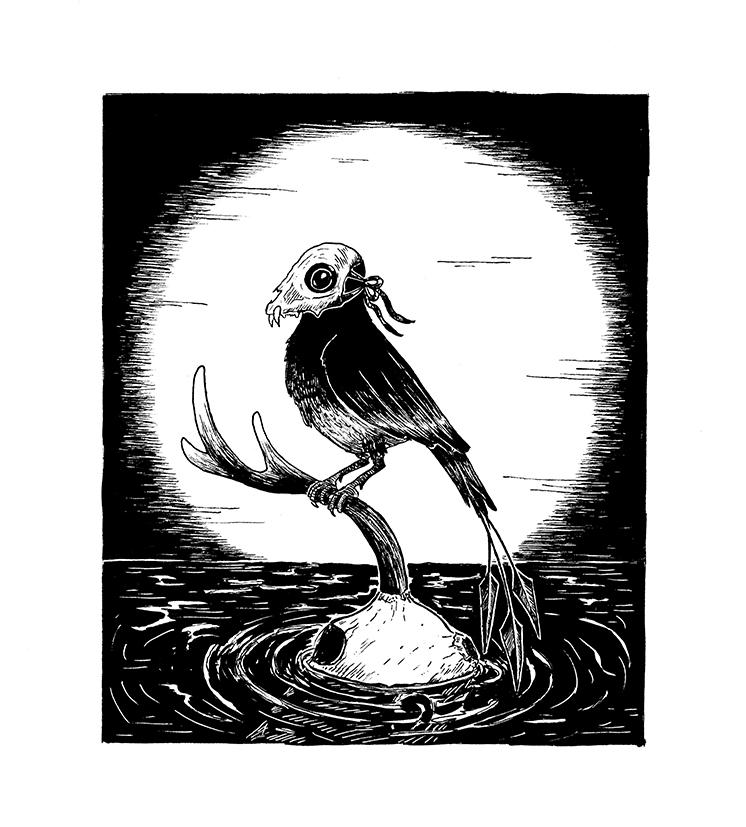 bird-skull-surreal-illustration-sketch-thelovelycreature-creature-eerie