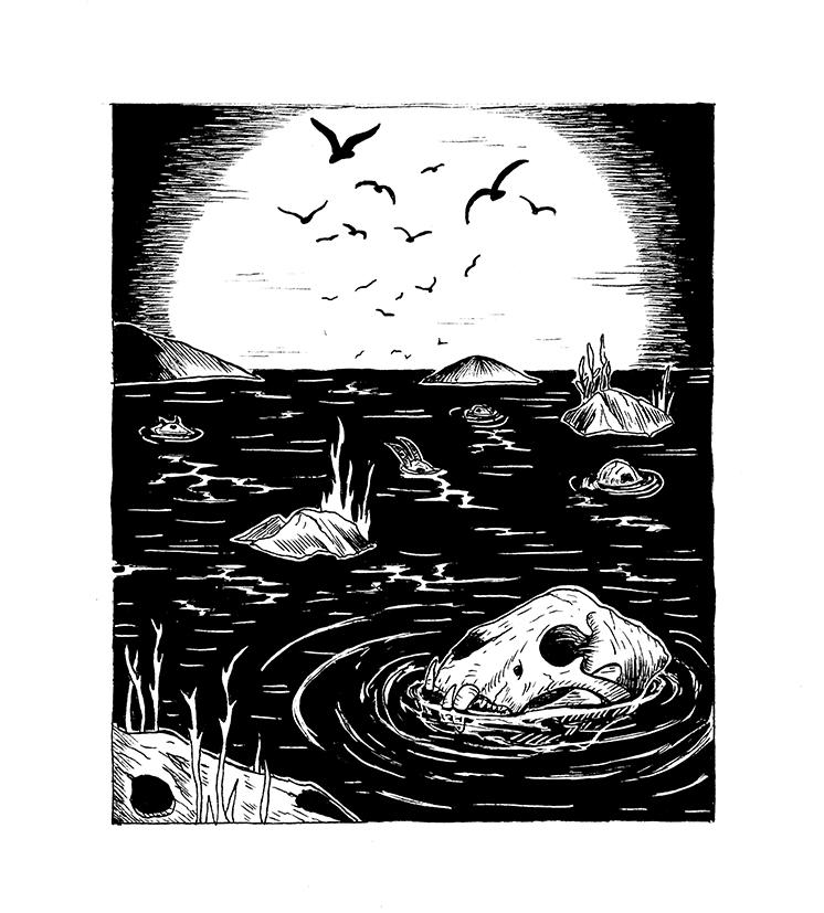 bird-skulls-in-water-cave-illustration-surreal-art-lovely-creature-creepy