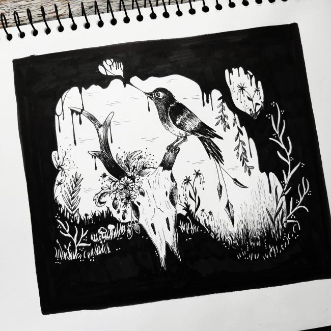 bird illustration surreal the lovely creature thelovelycreature